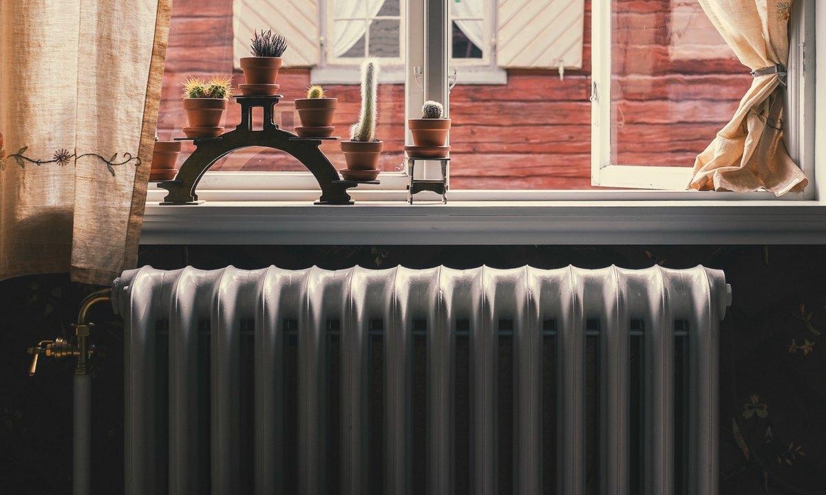 окно, батарея, радиатор, кактусы на окне, тепловая энергия, тепло, оплата, долги, задолженность, апрель, 2020, карелия, петрозаводск, тгк