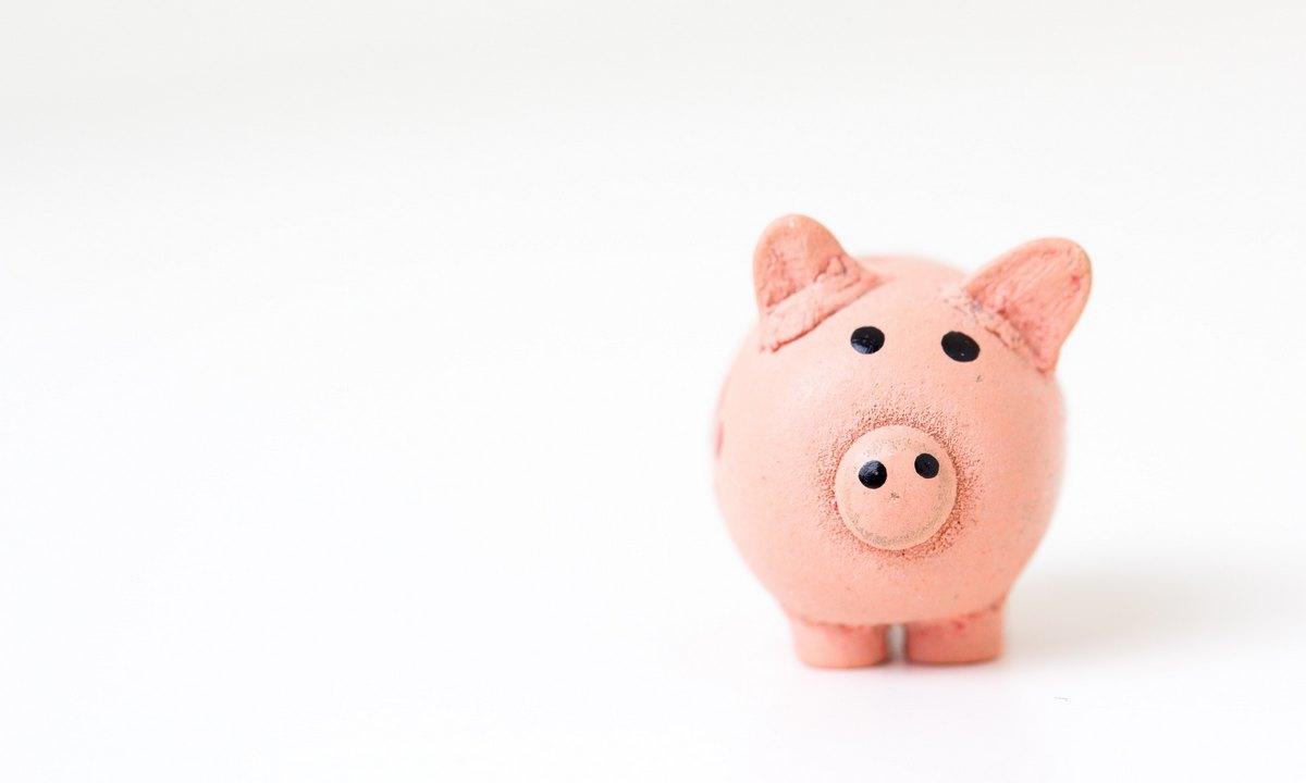 свинья копилка, хрюшка, копить деньги, бюджет, траты, семья, кризис