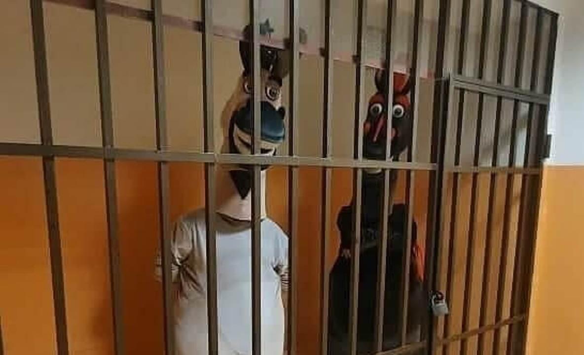 аниматоров в Сочи задержали