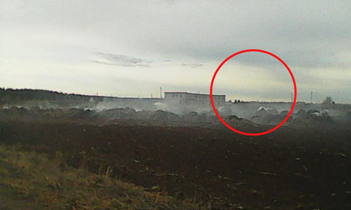 Для эффектного TikTokа две школьницы сожгли ферму