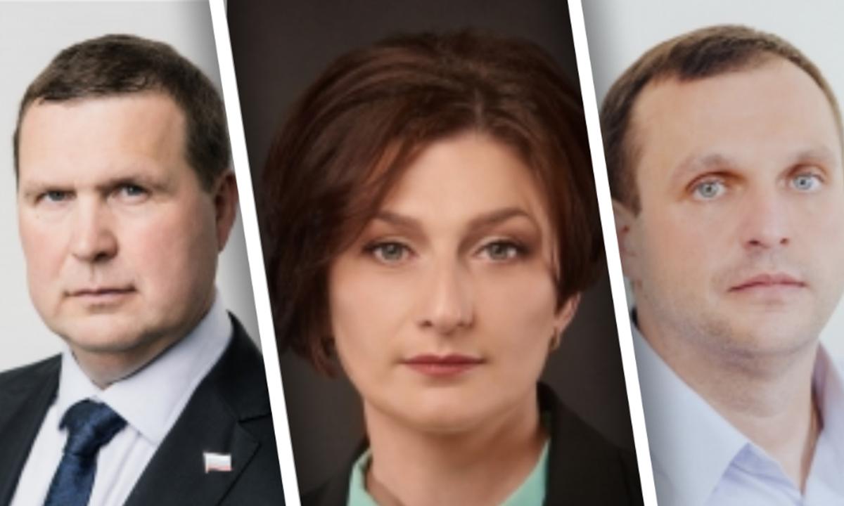 Депутаты Петросовета опубликовали сведения о доходах
