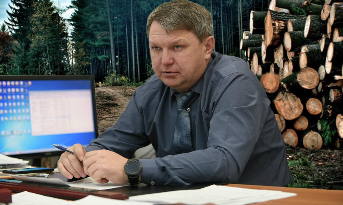 Карельскому министру природы и экологии вынесли обвинительный приговор