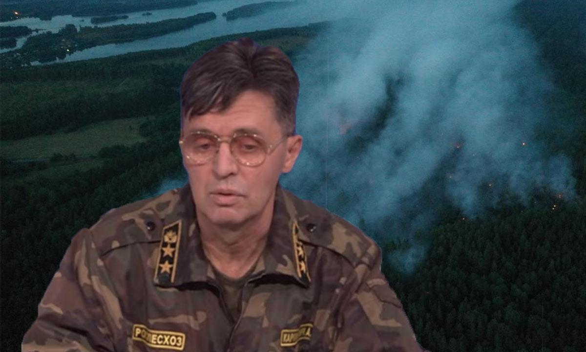 Министр природы Карелии обвинил арендаторов лесов в пожарах