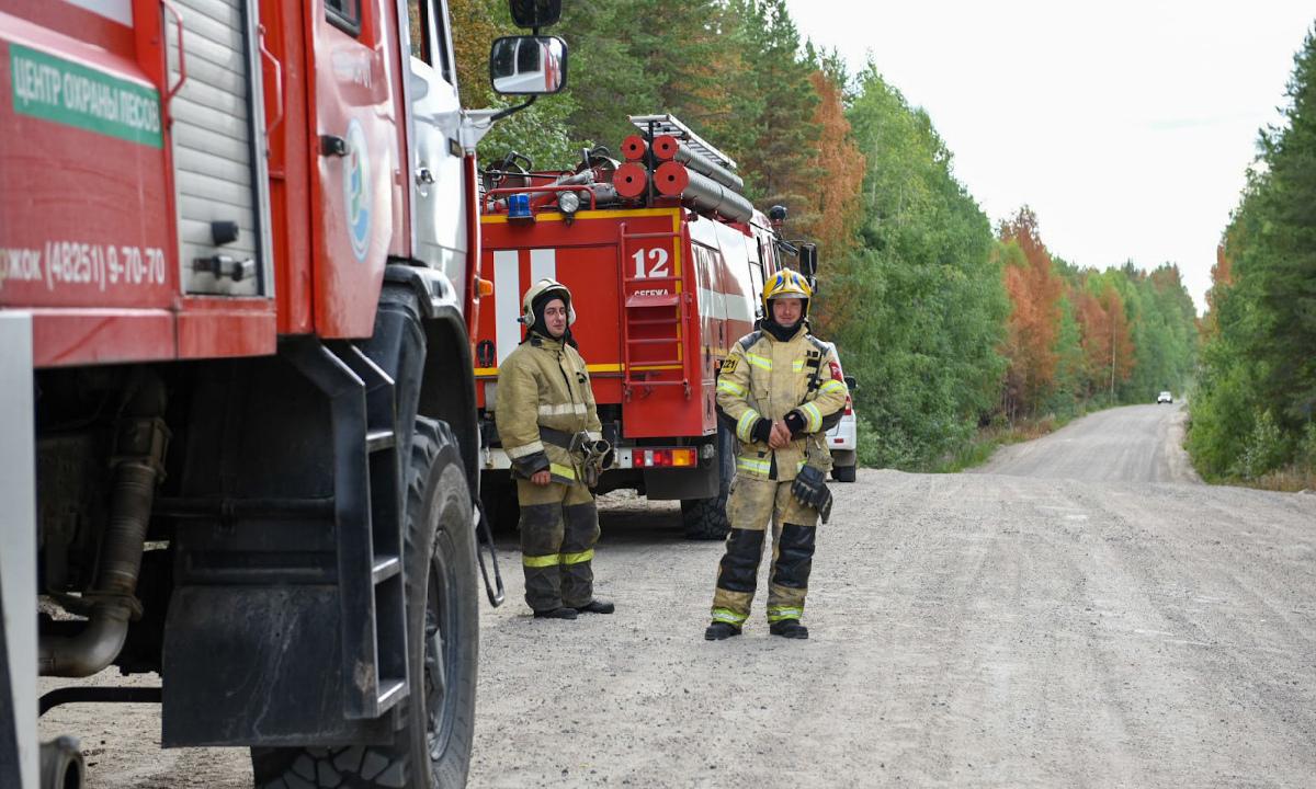 пожар в сегежском районе