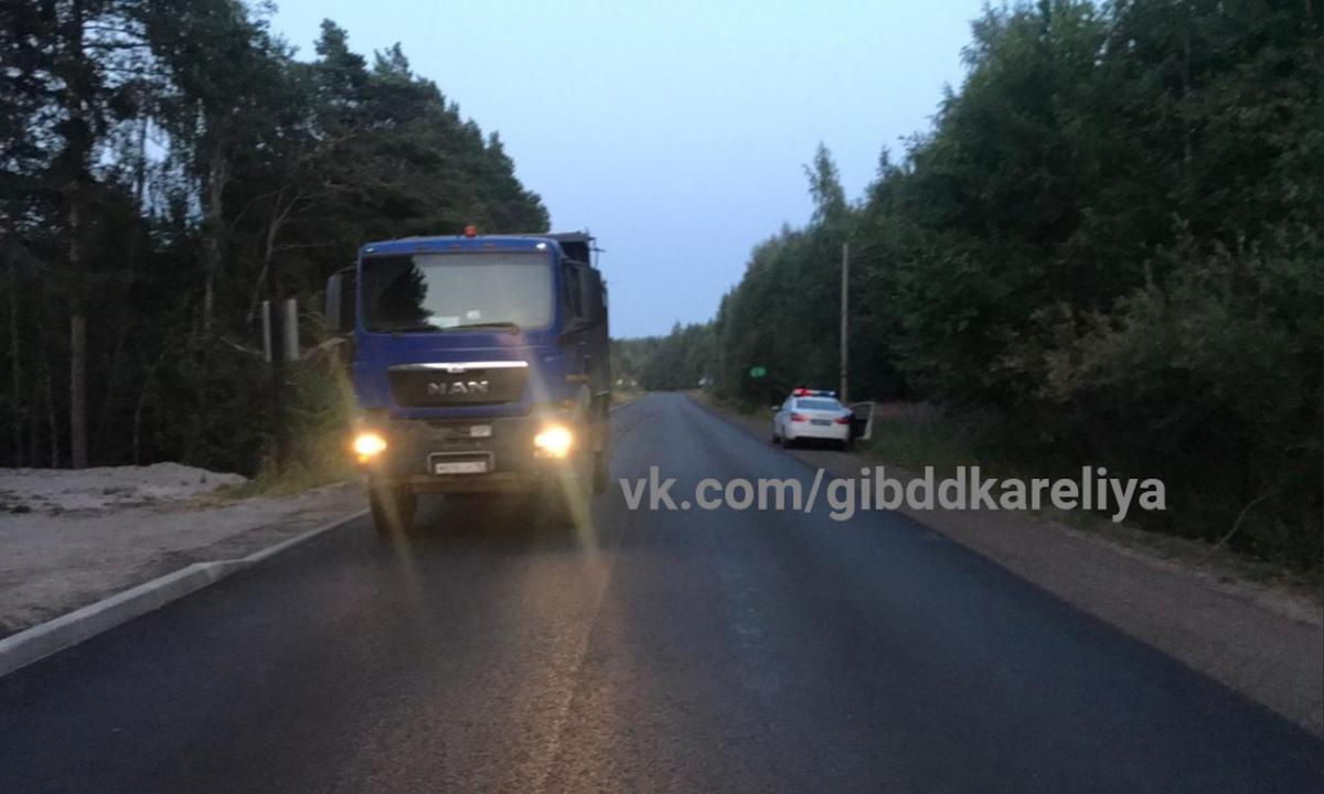 ребенок погиб на трассе в Карелии