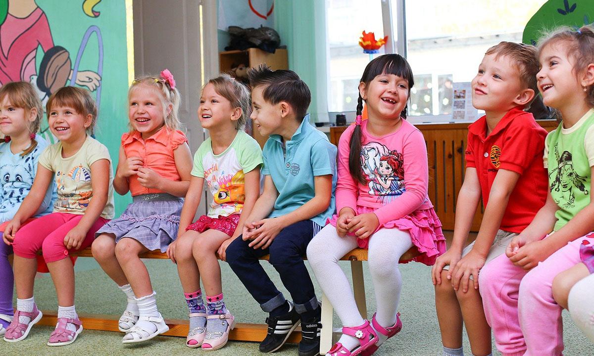 для детского сада вырубят лес в петрозаводске
