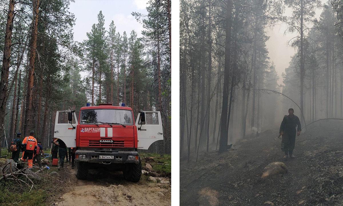 Пожары вблизи Сегежи локализованы
