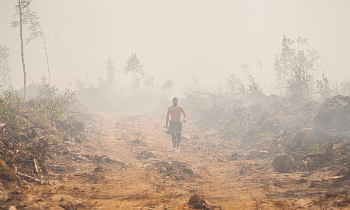 Глава Минприроды Карелии назвал плохую связь основной причиной трудностей при тушении лесных пожаров