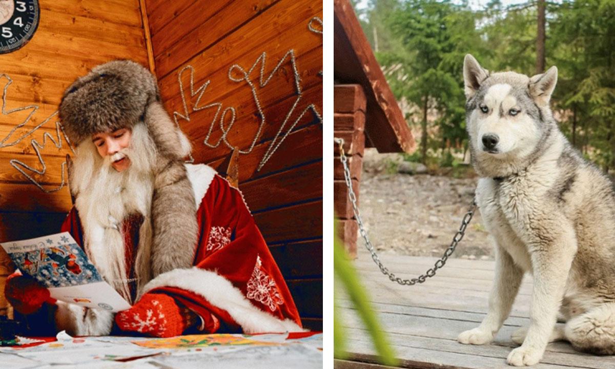 «Это сезонный концлагерь»: туристка шокирована вотчиной карельского Деда Мороза