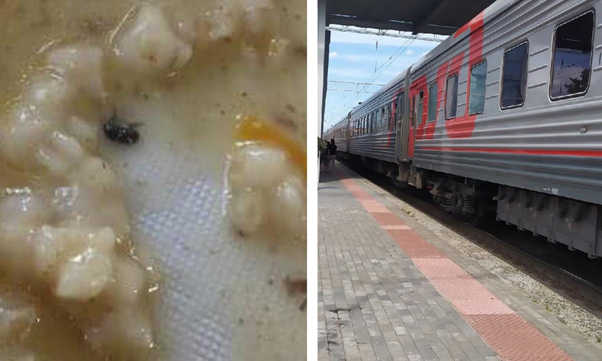 Отравившихся в поезде детей кормили кашей с насекомыми