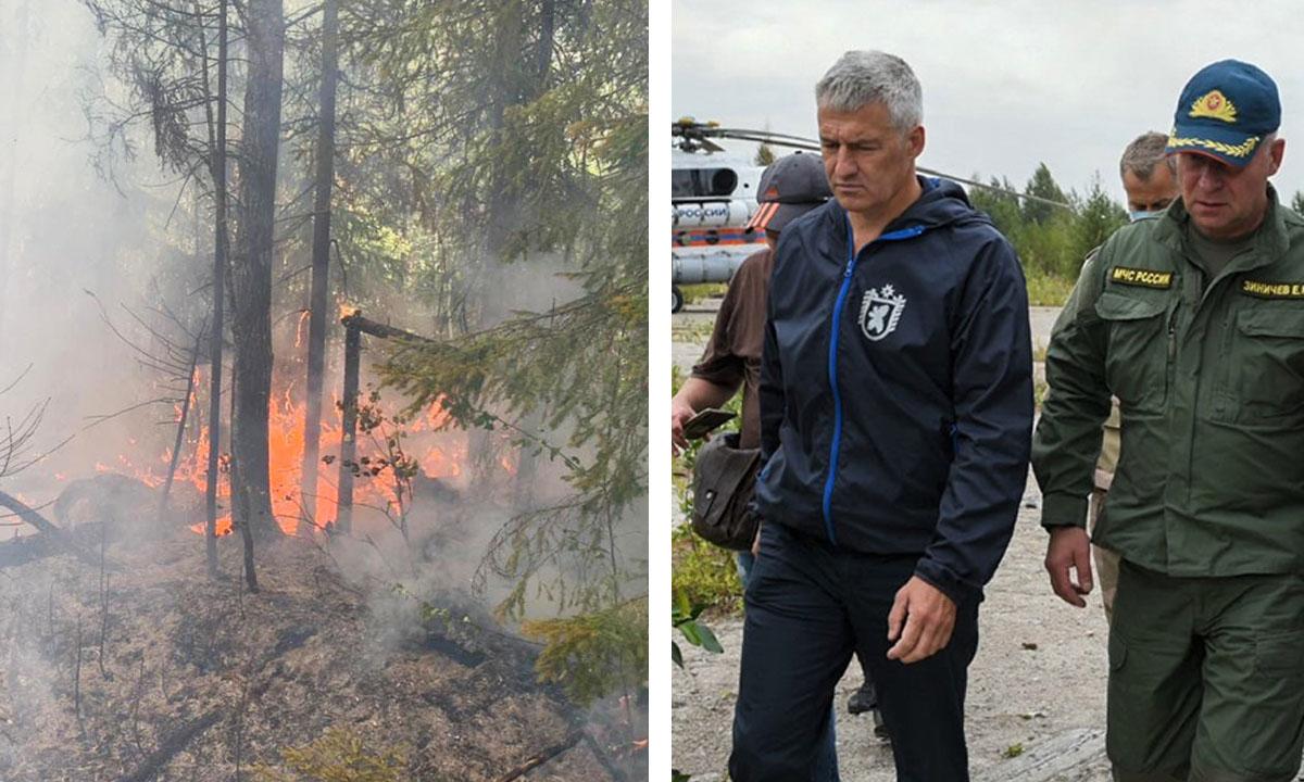 Рослесхоз выделил Карелии 50 миллионов рублей из-за лесных пожаров