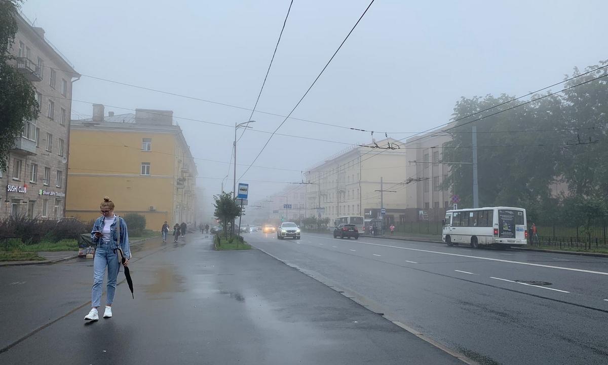 погода Петрозаводск