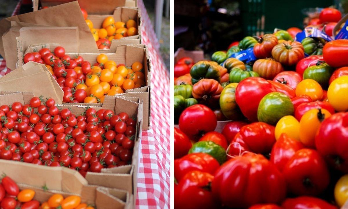томаты, рынок, купить