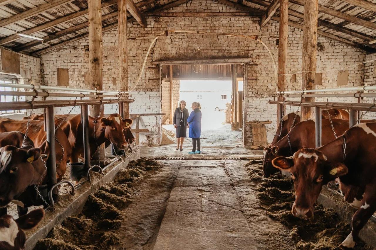 Эмилия Слабунова на ферме
