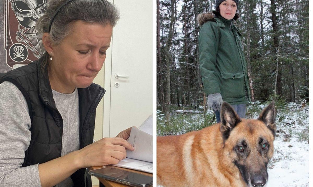 собака, девушка, снег