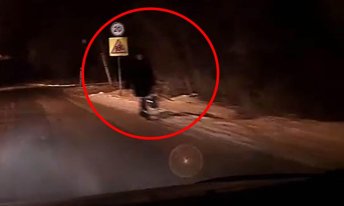 В Карелии штрафуют пешеходов из-за светоотражателей